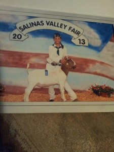 Alex Salinas Valley Fair